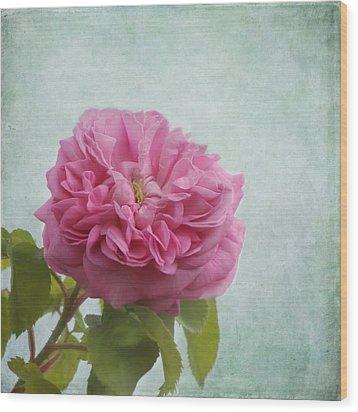A Rose Wood Print by Kim Hojnacki
