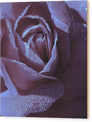 A Rose That Glitters Wood Print by Michelle Ayn Potter