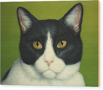 A Serious Cat Wood Print