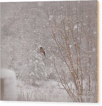 Wood Print featuring the photograph A Sign Of Spring by Brenda Bostic