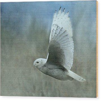 A Snowy Flight Wood Print by Angie Vogel