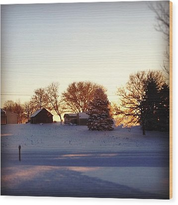 A Snowy Morning Wood Print by Christy Beckwith