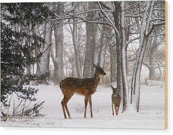 A Snowy Path Wood Print