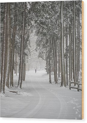 A Solitary Winter Wanderer Wood Print by Dick Wood