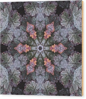 A Spider Web On Coral Bells Wood Print by Trina Stephenson