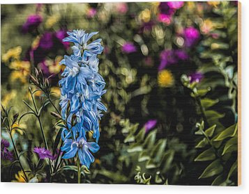 Wood Print featuring the photograph A Splash Of Blue by Joshua Minso