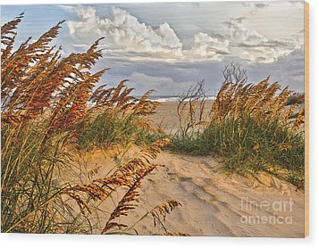 A Splendid Day At The Beach - Outer Banks Wood Print by Dan Carmichael