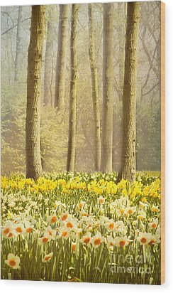 A Spring Day Wood Print