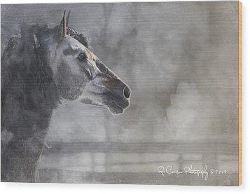 A Stallions Pride Wood Print