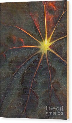A Star Wood Print by Sabrina L Ryan