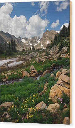 Wood Print featuring the photograph A Stream Runs Through It by Ronda Kimbrow