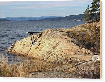 A Summer Day By The Oslo Fjord Wood Print
