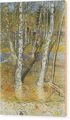 A Summer Day On A Norwegian Fjord Wood Print by Hans Dahl