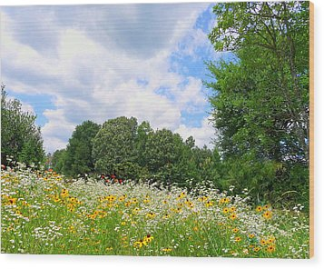 Wood Print featuring the photograph A Summer Meadow by Jim Whalen
