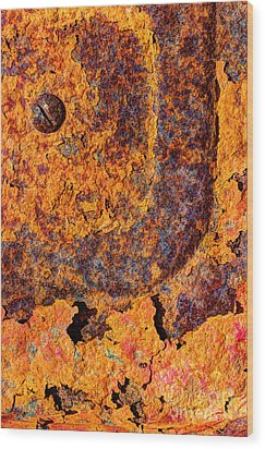 A Tad Rusty Wood Print by Heidi Smith