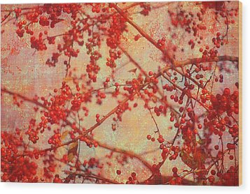 A Tangle Of Fruited Branches Wood Print by Suzanne Powers