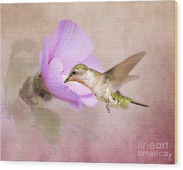 A Taste Of Nectar Wood Print