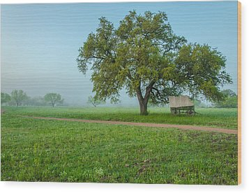 A Texas Morning Wood Print by Jeffrey W Spencer