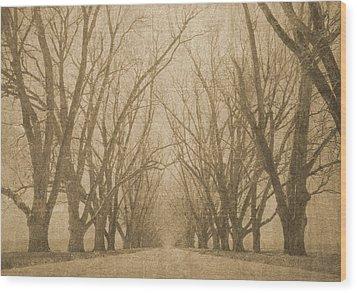 A Thousand Words Wood Print by Brett Pfister