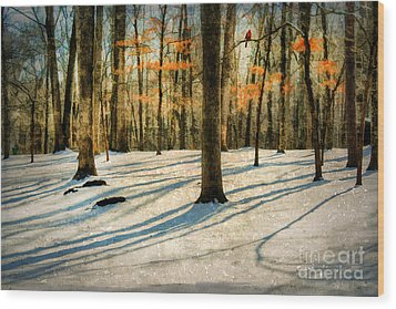 A Touch Of Autumn Wood Print by Darren Fisher
