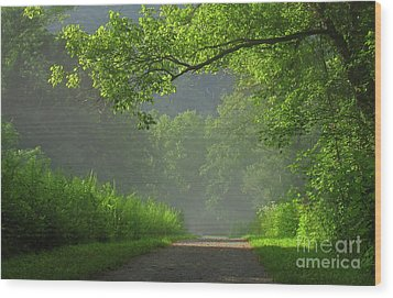 A Touch Of Green II Wood Print