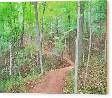 A Trail Through The Woods Wood Print
