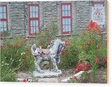 Wood Print featuring the photograph A Treasure In A Garden by Barbara McDevitt