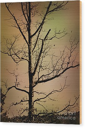 A Tree By The Lake Wood Print