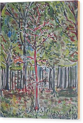 A Tree Grows In Marine Park Wood Print by Jacob Mezrahi