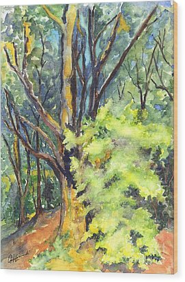 A Tree In Dunkeld Scotland Wood Print by Carol Wisniewski