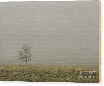 A Tree In Sunrise Fog Wood Print by Cindy Bryant