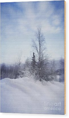 A Tree In The Cold Wood Print by Priska Wettstein