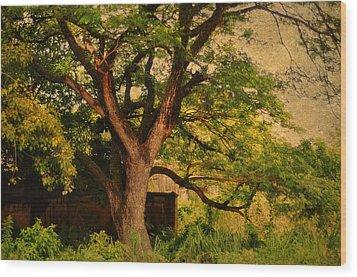 A Tree Wood Print by Jenny Rainbow