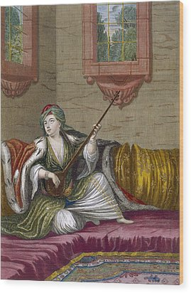 A Turkish Girl Playing The Tehegour Wood Print by French School