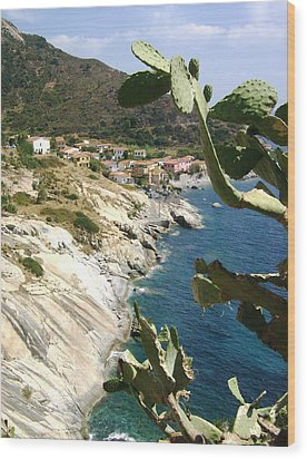 Wood Print featuring the photograph A Typical Bay Of Elba Island by Giuseppe Epifani