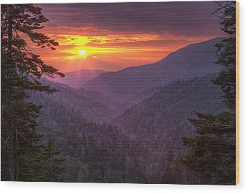 A View At Sunset Wood Print by Andrew Soundarajan