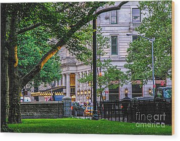 A View From Central Park Wood Print by Mary Carol Story