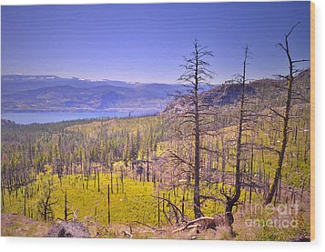 A View From Okanagan Mountain Wood Print by Tara Turner