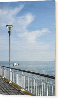 a View from Pier Wood Print by Svetlana Sewell