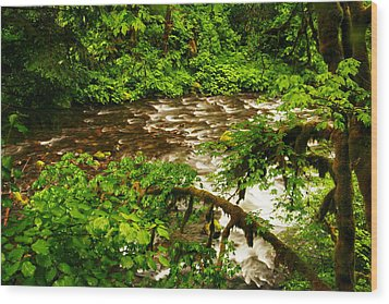 A View Of Eagle Creek Wood Print by Jeff Swan