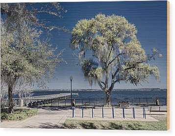 A View Of Lake Minneola Wood Print by Lewis Mann