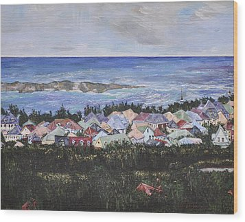 A View Of Orient Bay Wood Print by Dottie Branchreeves