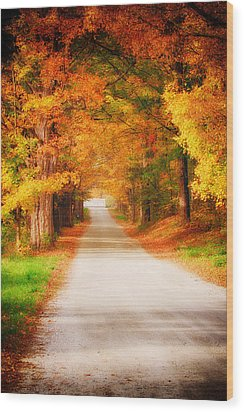A Walk Along The Golden Path Wood Print by Jeff Folger