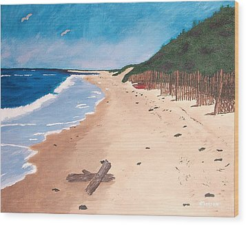 A Walk In Nantucket Wood Print