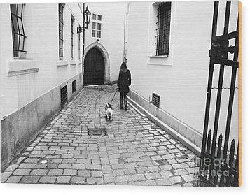 A Walk In Prague Wood Print by John Rizzuto