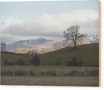 Wood Print featuring the photograph A Walk In The Countryside In Lake District England by Tiffany Erdman