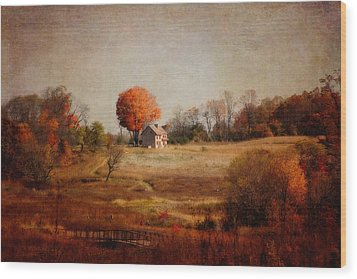 A Walk In The Meadow With Texture Wood Print