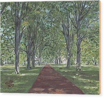 Washington Crossing State Park Wood Print