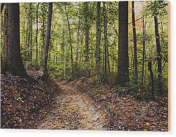 Wood Print featuring the photograph A Walk In The Park by Robert Culver