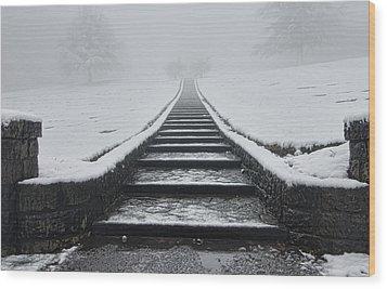 A Walk Into The Fog Wood Print by Don Schwartz